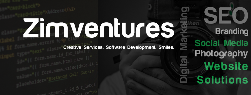 What Can Zimventures Do For You?